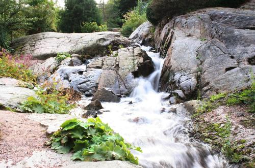 waterfall-with-slow-shutter-speed